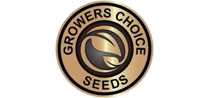 Growers Choice Seeds Reviews