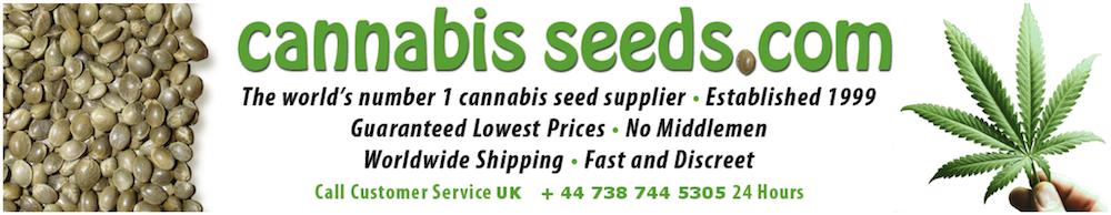 CannabisSeeds.com Review