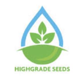 high grade seeds review