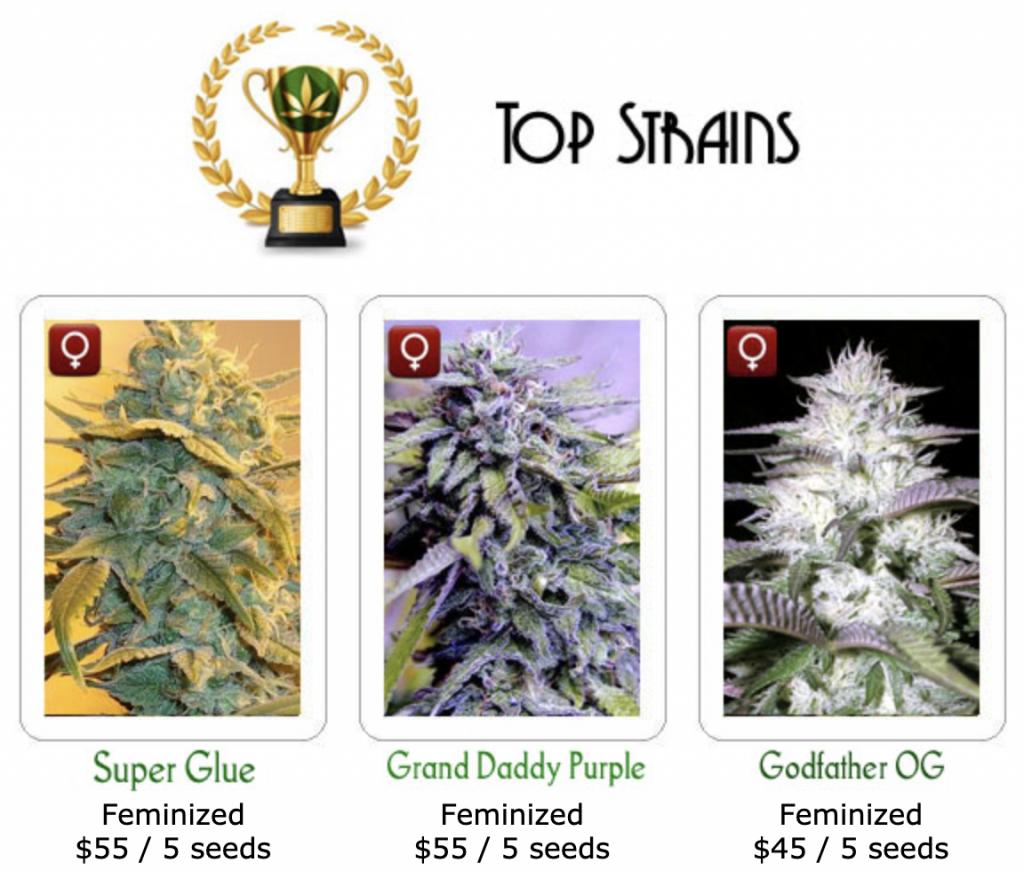 Highgrade Seeds Strain Selection
