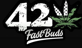 Fast Buds Reviews